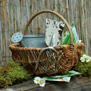 naturopathie et la joie du jardin