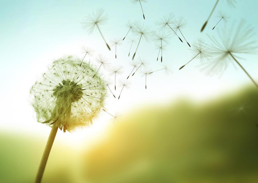 gestion du stress avec la relaxation et la respiration