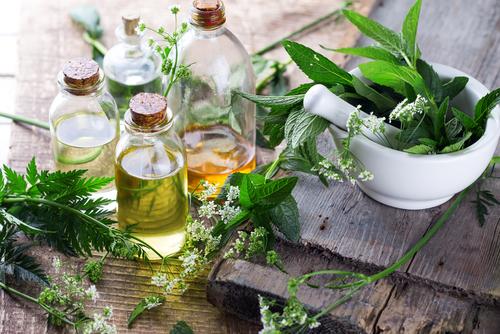 plantes en naturopathie