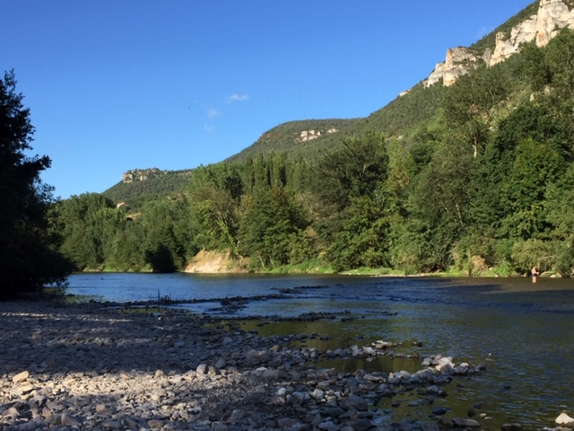 naturopathie et environnement